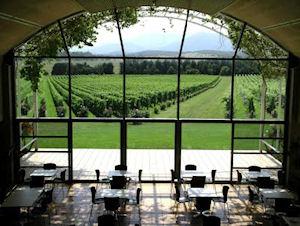 The Moët & Chandon vineyard, Yarra Valley
